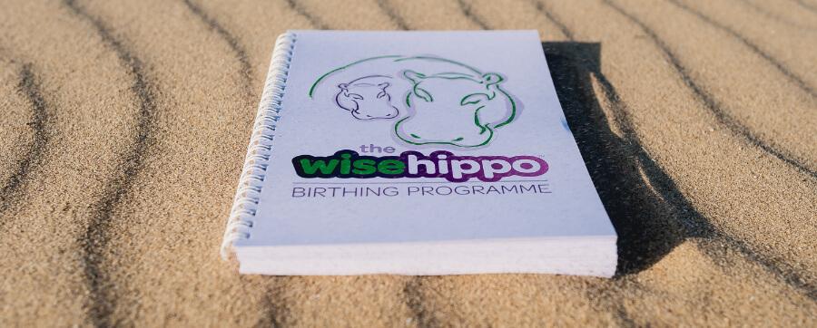 wise hippo programme on beach